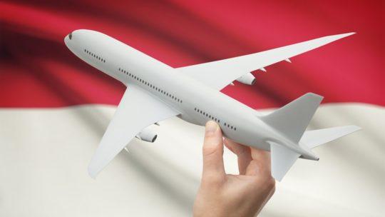 Индонезийскую авиакомпанию заставили отложить рейс из-за фруктов