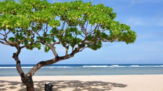 Доступ туристам на Бали ограничат